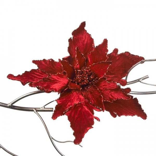 Poinsettia on Clip Red